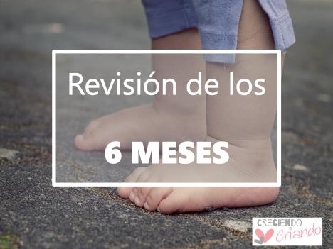revision_6 meses_bebe.png